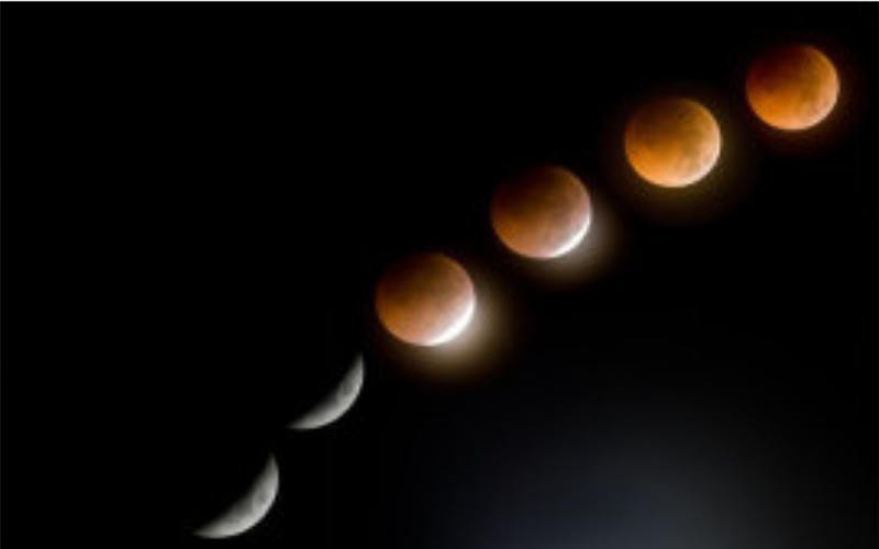 Lunar Eclipse Madness